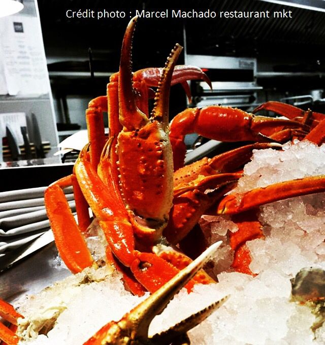 It's Snow Crab Season! ••• Snow crab is seasonnaly fished from April to May, in the St.Lawrence River up to the Magdalen Islands ••• Free parking from 5:30pm Infos & reservation: (514)849-2044