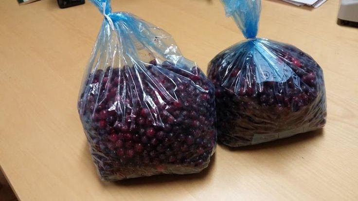 Tack snälla för den lyxiga presenten i form av två rejäla påsar hemplockade tranbär! Djurägare Smiley heart !