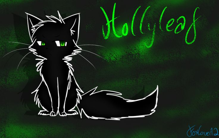 We Miss You Hollyleaf Hope Youre Happy In Starclan Find This Pin And More On For Warrior Cats