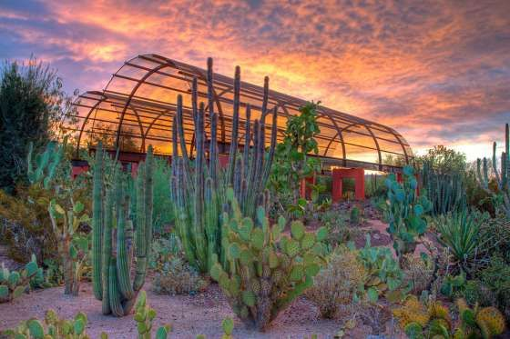 Phoenix Arizona | Phoenix Attractions and Events : VisitPhoenix.com