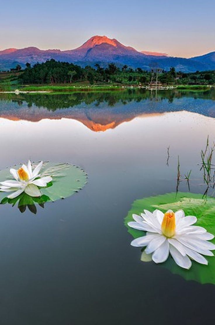 Mount Apo, Davao City, The Philippines.