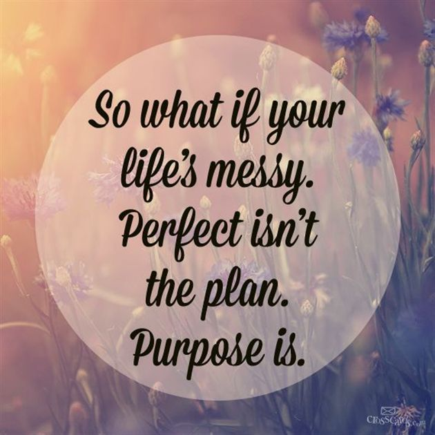 So What if Your Life's Messy.  Perfect Isn't the Plan. PURPOSE Is.