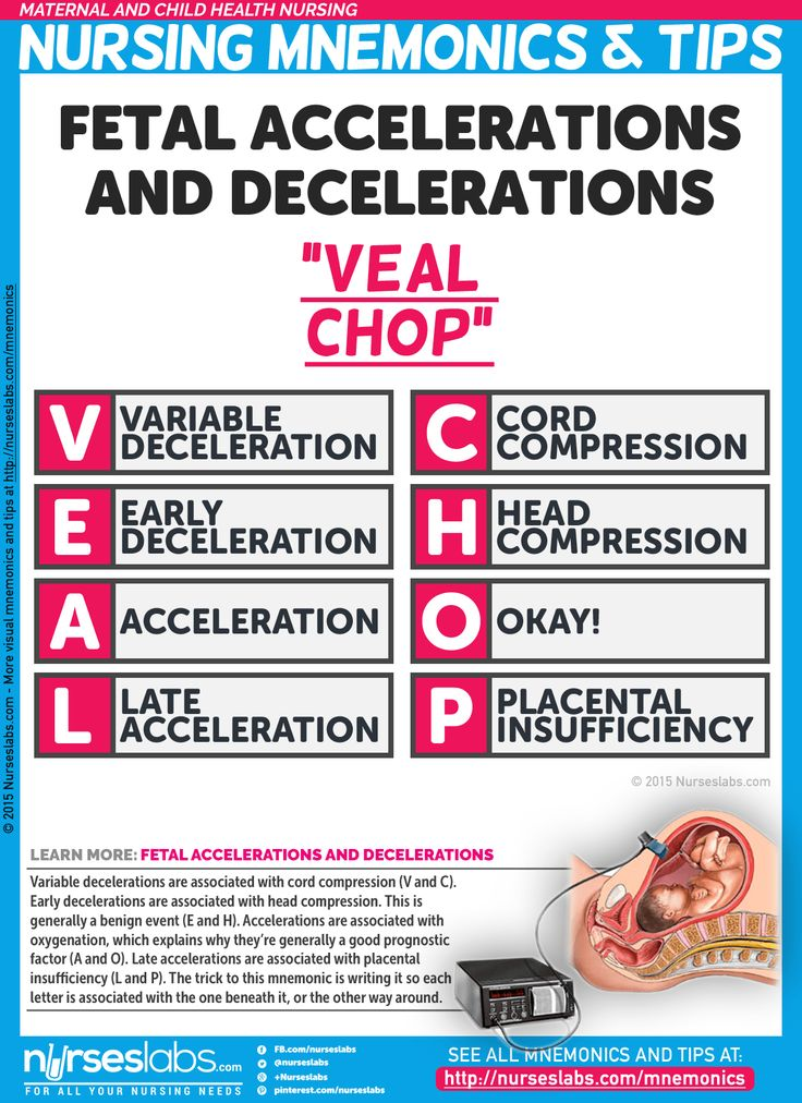 Fetal Accelerations and Decelerations Nursing Mnemonic (VEAL CHOP)