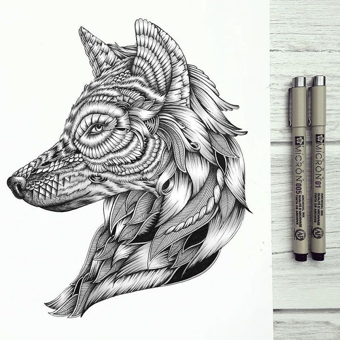 10+ Incredibly Detailed Animal Drawings By Faye Halliday