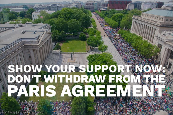 We need climate action now — leaving the Paris Agreement is a huge step backwards that we can't afford to take. - Action Network https://actionnetwork.org/forms/we-need-climate-action-now-leaving-the-paris-agreement-is-a-huge-step-backwards-that-we-cant-afford-to-take?source=facebook&