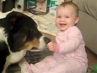 Adorable....baby feeds puppy cheerios from plate and giggles the whole time...so cute! :) click pick and look for 2 pups + 1 baby = insanely cute video