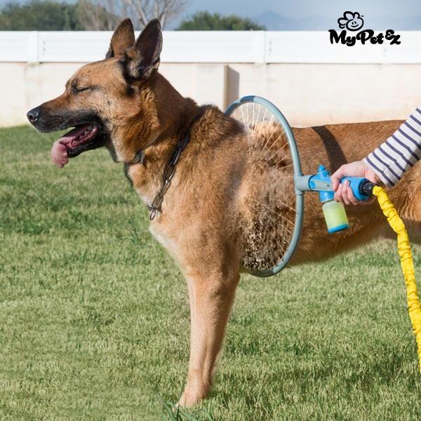 Anneau De Douche Pour Chiens Dog Wash Dogs Pets