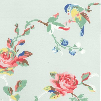 papier peint bird