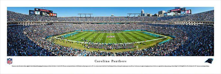 Carolina Panthers Panoramic - Bank of America Stadium Picture