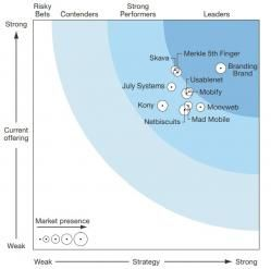 The Forrester Wave™: Mobile Commerce Solution Providers, Q4 2013 Merkle   5th Finger (registration required)