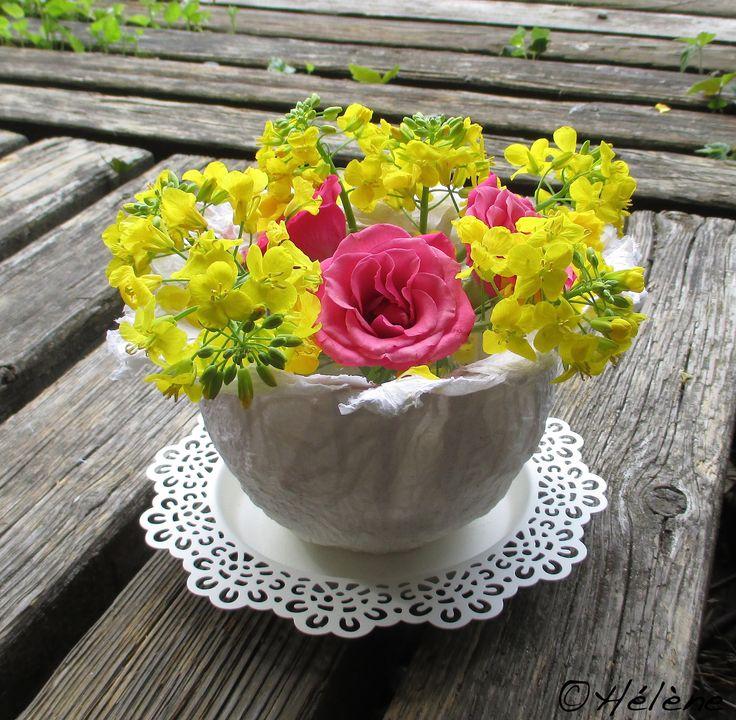 Fleurs de colza, rose et contenant en papier maché