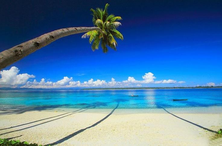 Pulau Banggai bij Sulawesi!