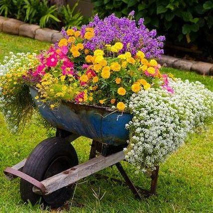 Heeft u nog een oude kruiwagen staan? Gebruik deze eens om bloemen in te planten!