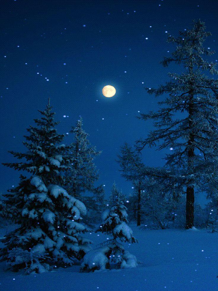 Картинка ночи зимы