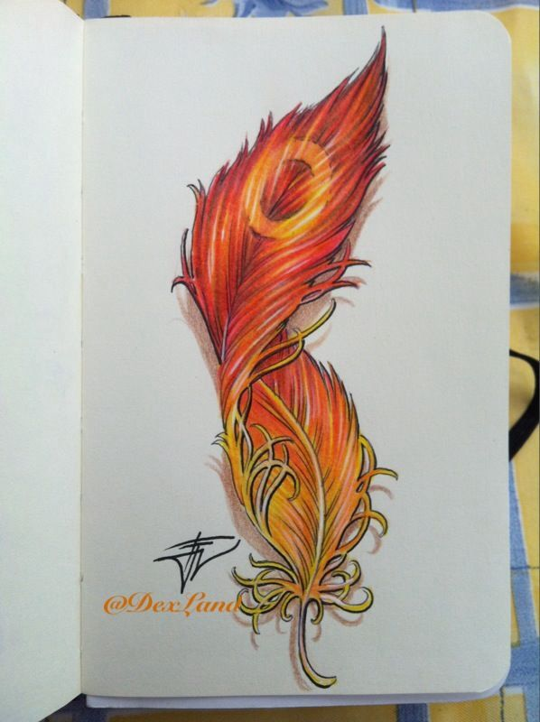 Initial design for Phoenix feather xx