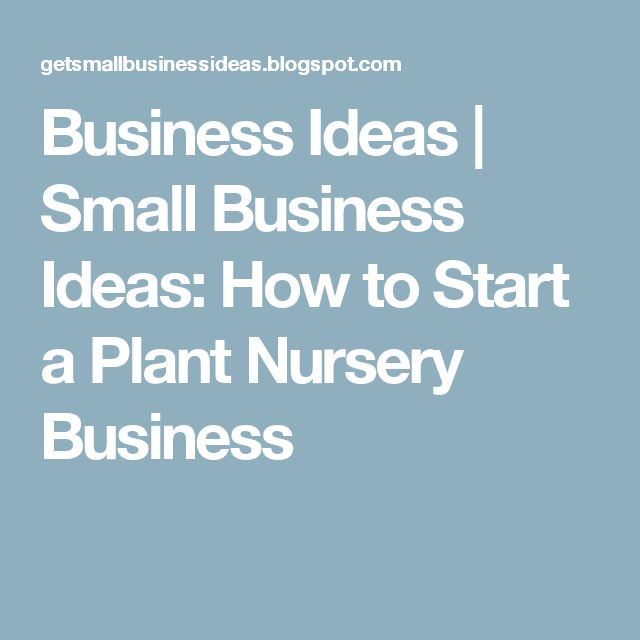 Business Ideas | Small Business Ideas: How to Start a Plant Nursery Business