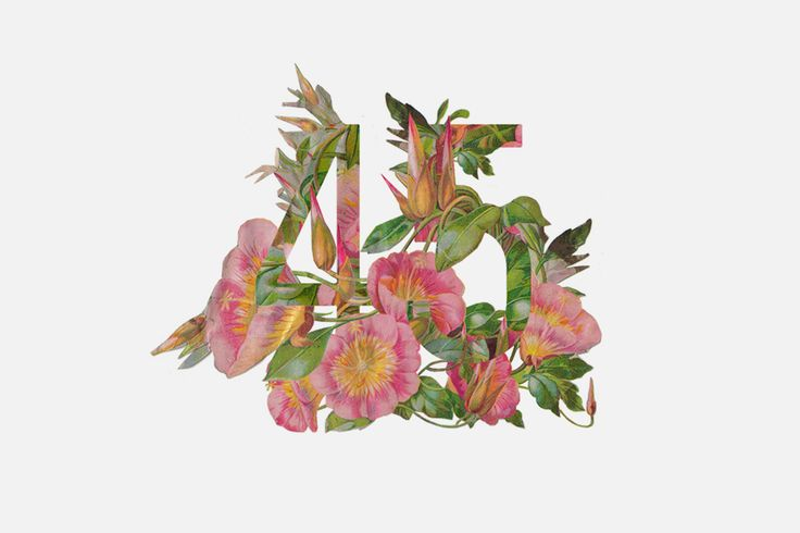 Floral Typography - Kyle White | Art Director Based in New York City