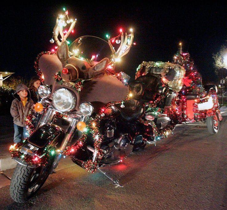 121 Best Unique Christmas Lights Images On Pinterest