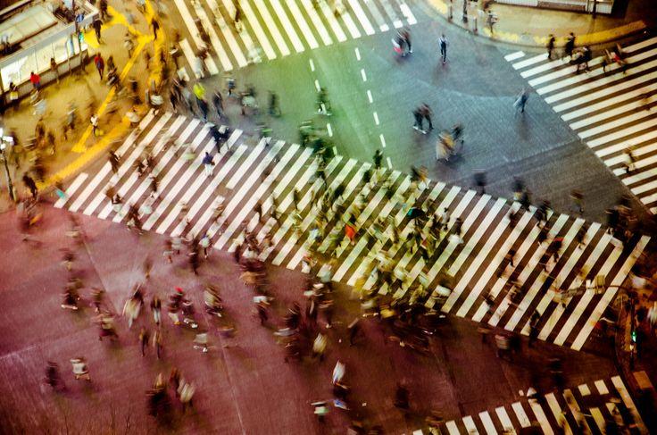 Shibuya by Elizabeth WIthers