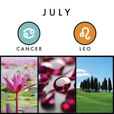 19 best july images on pinterest cancer zodiac signs astrology and zodiac cancer. Black Bedroom Furniture Sets. Home Design Ideas