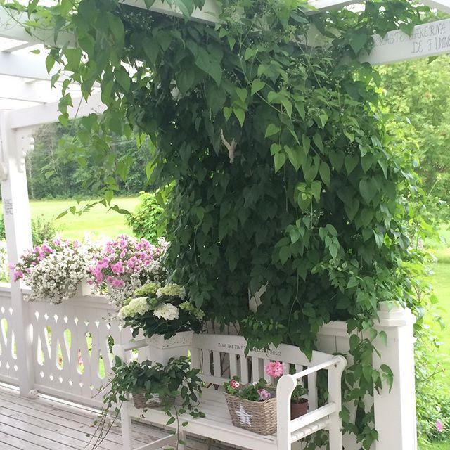 Le 25 migliori idee su giardini di casa su pinterest - Giardini di casa ...