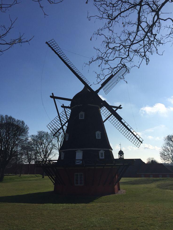 Wonderful Copenhagen on a lovely sunny walk! #kastellet