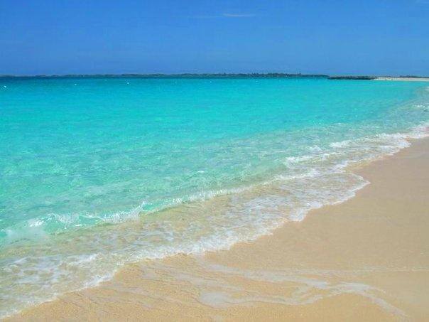 Rays Black Sand Beach Vital Ital Lucea Jamaica - YouTube |Jamaican Black Sand Beaches