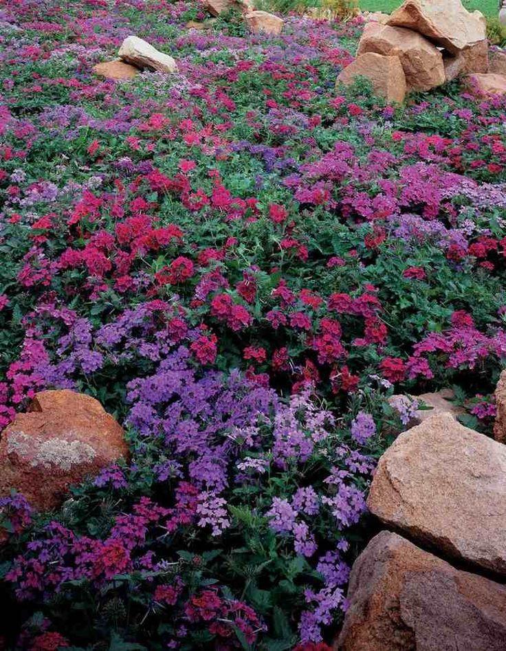 17 meilleures idees a propos de lits de fleurs de pierre With tapis chambre bébé avec caron fleurs de rocaille