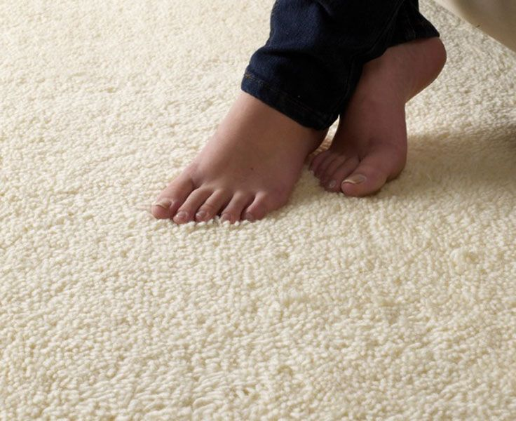 carpet cleaning instructions for steam it gone dry vapor steam ...