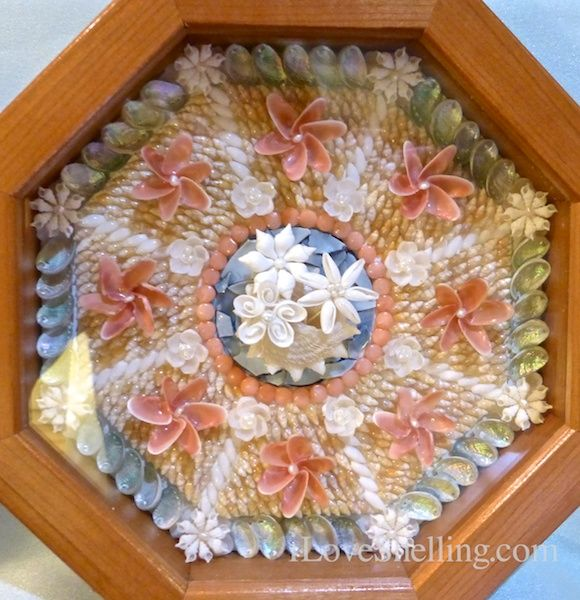 Exhibition Shell Vacations : Best sailor s valentines images on pinterest shells
