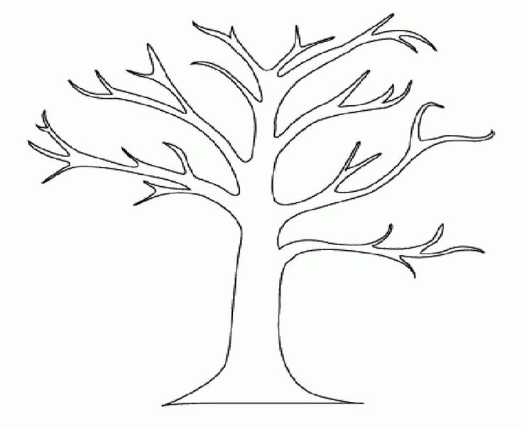 a bare tree colouring pages ( images)  tree coloring page