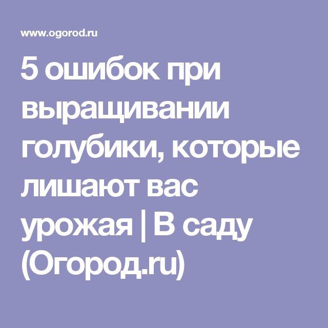 5 ошибок при выращивании голубики, которые лишают вас урожая | В саду (Огород.ru)