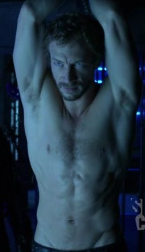 Kris Holden-Ried as Dyson in 'Lost Girl'. This one is for obvious reasons. ;)