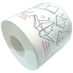 origami toilet paper what else were you gonna do there anyways