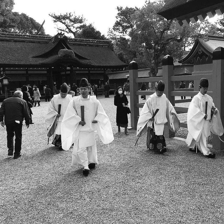 В синтоистском святилище #синто #храм #Япония