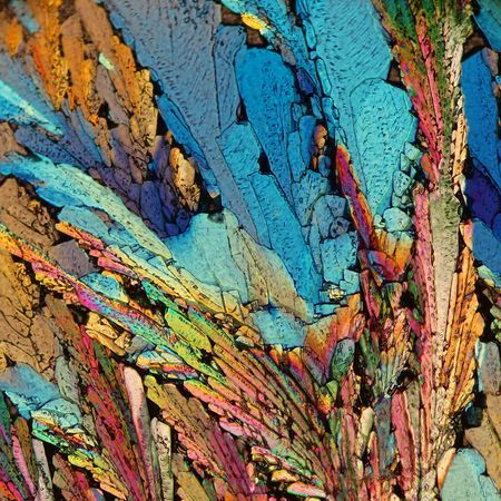 Feathers of crystal Photo by Bernardo Cesare -- National Geographic Your Shot