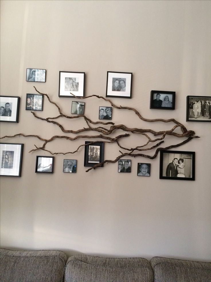 Real Tree branches hung on a wall to make this stylish Family Tree Photo display
