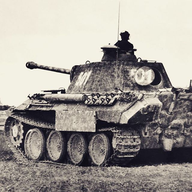 """Pz.V Panther Ausf.A """"501"""" (Kdr. SS-Ustuf. Norbert Neven du Mont) during combats in Poland in the summer 1944. Du Mont was Zugführer in 5./II. SS-PzAbt/SS-PzRgt 5 """"Wiking"""" and was killed in action on 26 June 1944, pin by Paolo Marzioli"""