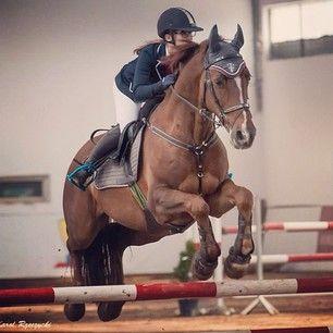 Instagram photo by marcelinamatyszczak - ❤️❤️❤️#horses #horse #horsesofinstagram #TagsForLikes #horseshow #horseshoe #horses_of_instagram #horsestagram #instahorses #wild #mane #instagood #grass #field #farm #nature #pony #ponies #ilovemyhorse #babyhorse #beautiful #pretty #photooftheday #gallop #jockey #rider #riders #riding