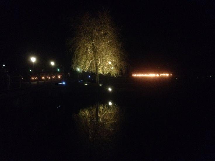 Odense december
