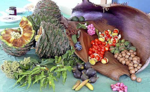 A selection of bush foods that includes bunya nuts, lilly-pillies, Davison's plum, figs, flowering lemon myrtle, the red fruited native tamarind and macadamias.