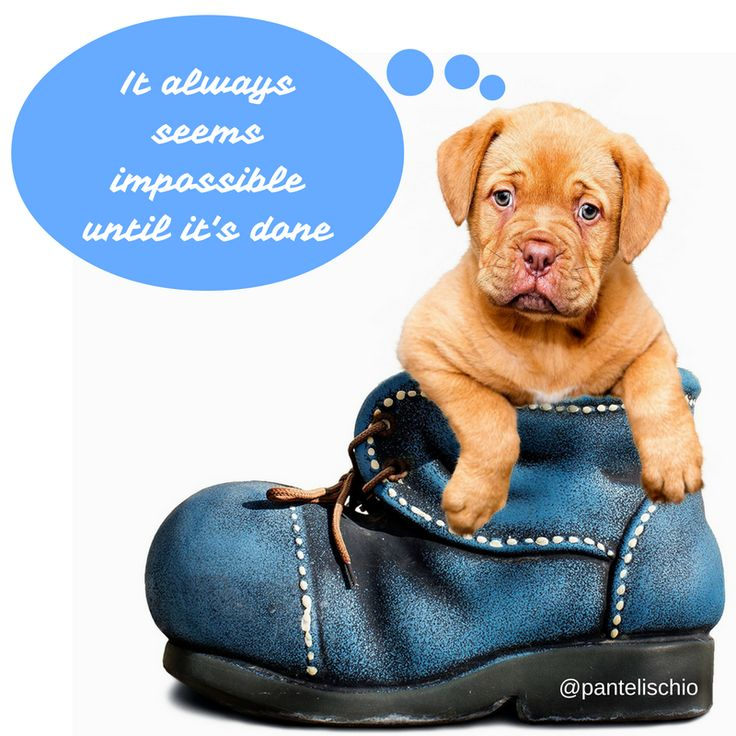 It always seems impossible until it's done #quotes #αποφθέγματα