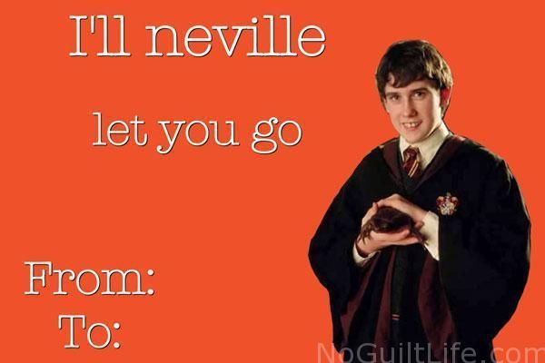 Pin By Raquel Gomes On Prost In 2020 Valentines Day Card Memes Valentines Memes Harry Potter Valentines Cards