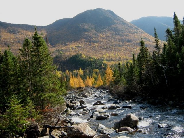 Mont-Albert, Parc national de la Gaspésie. Photo : Tourisme Gaspésie.
