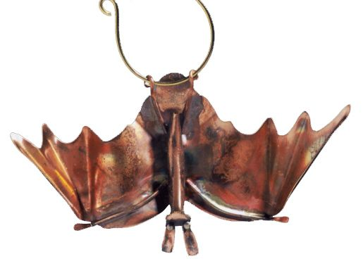 Copper Bat with wings open.