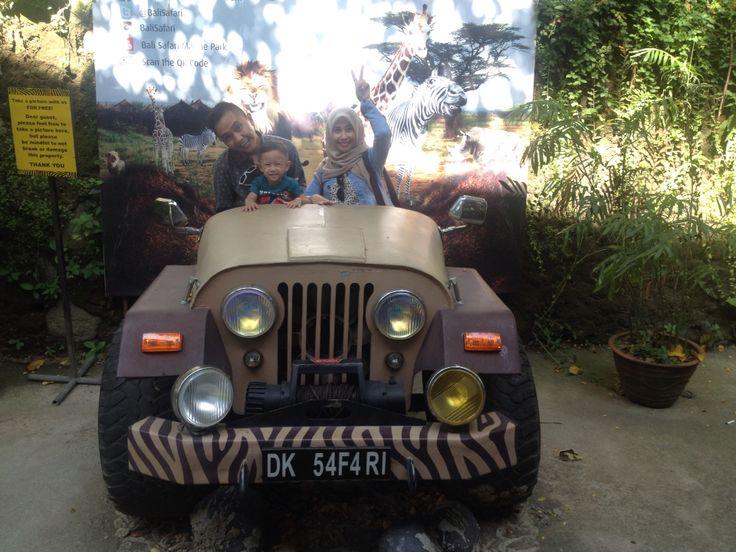 Safari journey