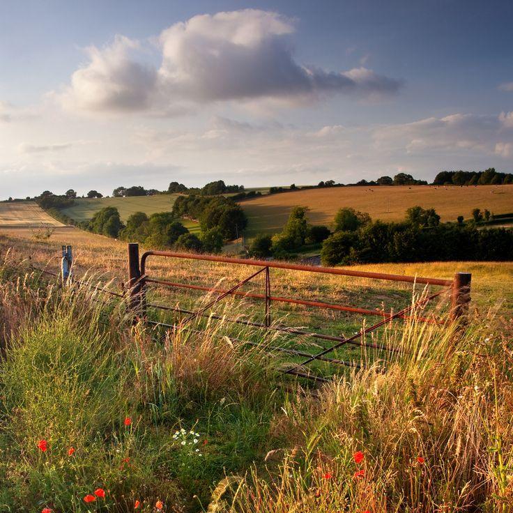 -°·°·°·°- – #countryside