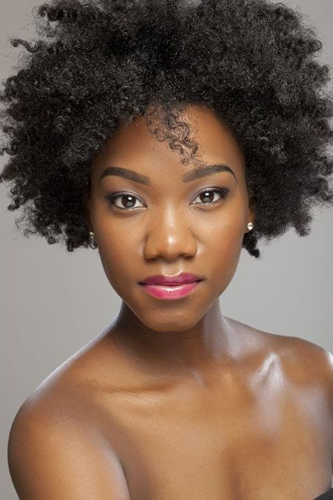 hair styles for african hair 288 best fabulous fros images on hair 8279 | 17e8279a10a7ce3878207935731acef3 natural hair braids short natural hair