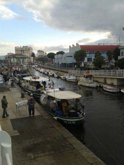 #viareggio #porto #pescherecci #darsena #fisherman #tuscany