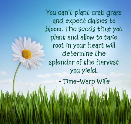 Whatsoever things are pure ~ Think Upon These Things...Inspiration, Heart, Food For Thoughts, Quote, Harvest Thoughts, Daisies, Gardens, Children, Crabs Grass